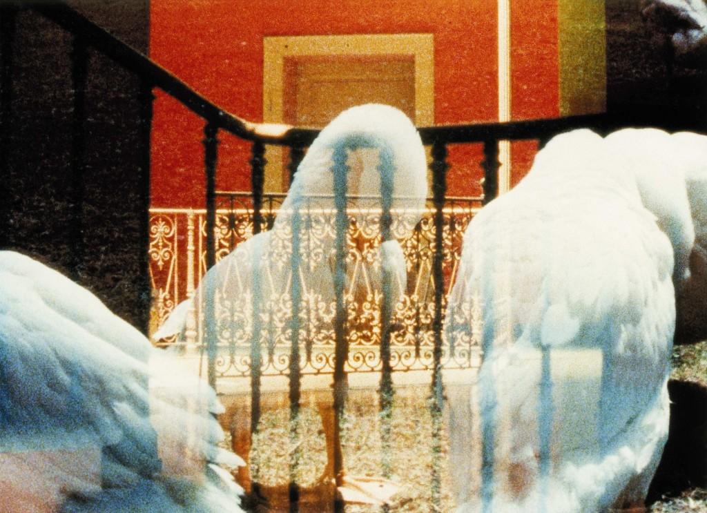 Hannes SCHÜPBACH-Film still from Portrait mariage_01_2525x1832px